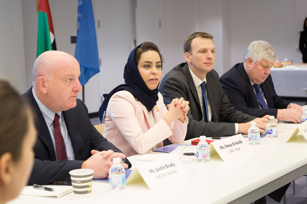 uae steers discussion about humanitarian crisis in horn of africa with un partners