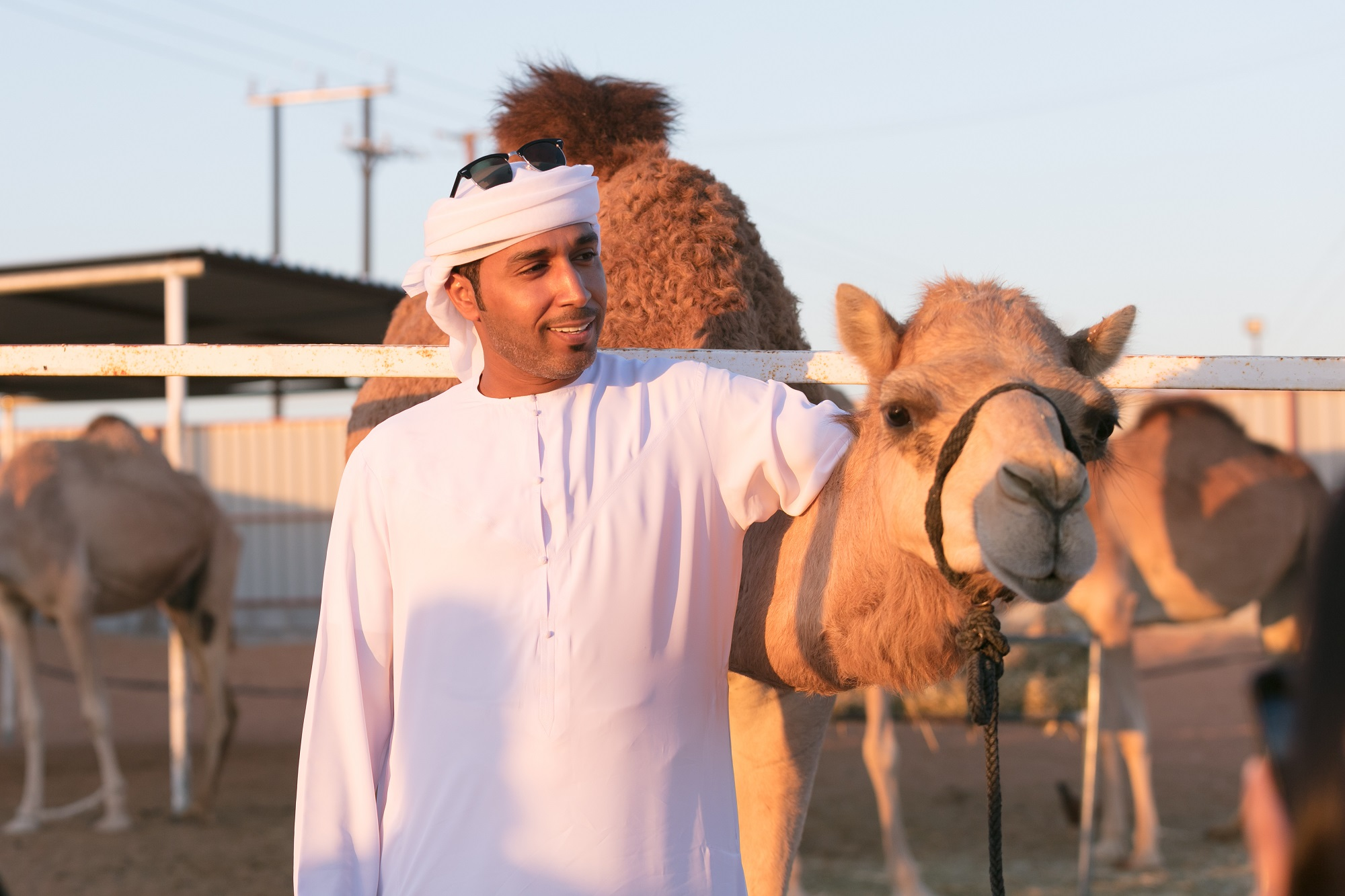 tour exploring ancient traditions of camel convoys returns to al ain3