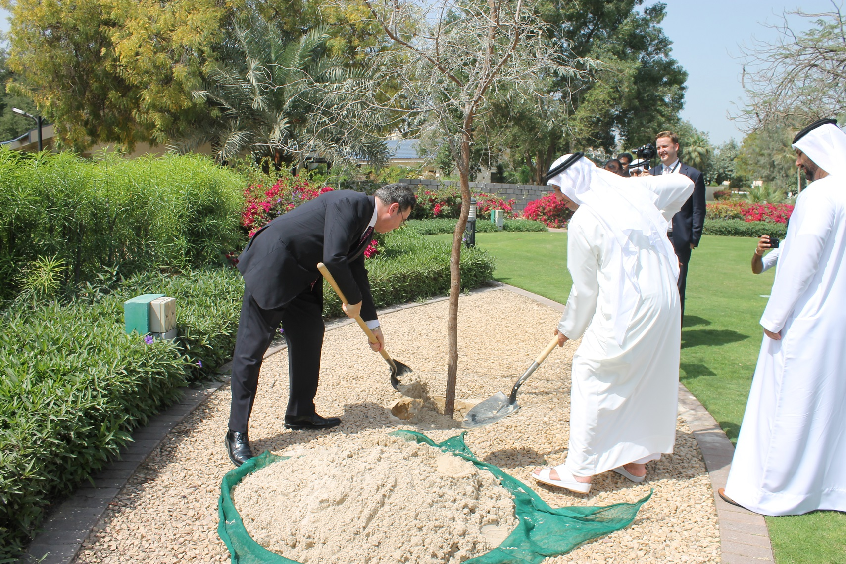 british consulate plants tree to celebrate sheikh zayed's environmental legacy