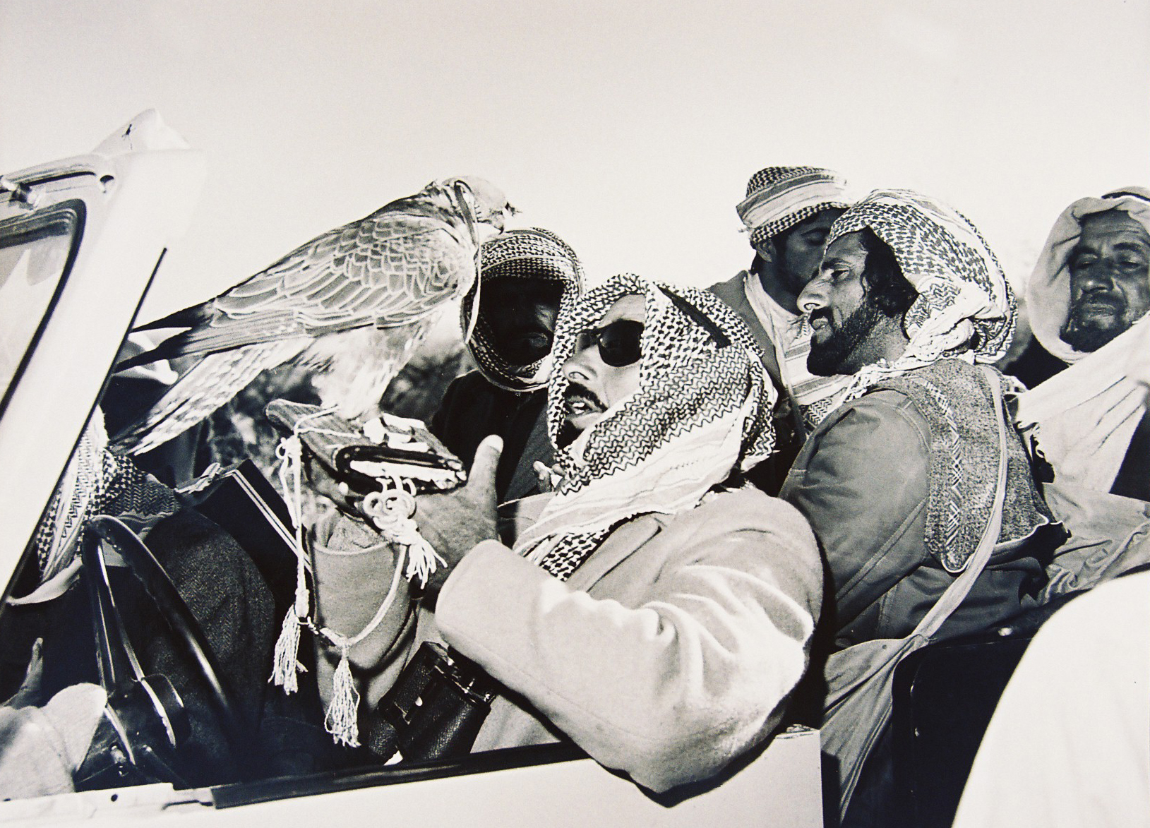 sheikh zayed first falconer and nature protector (2)