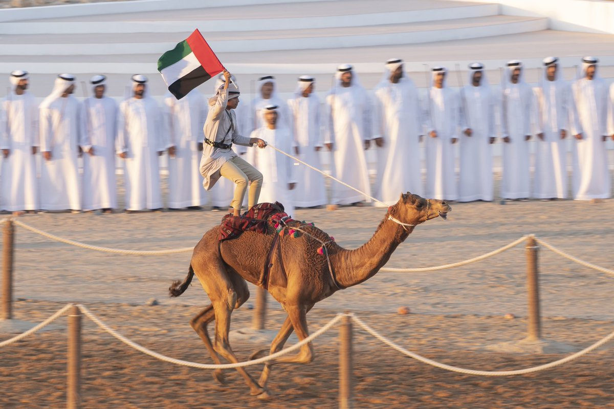 mohamed bin zayed attends march of union 4