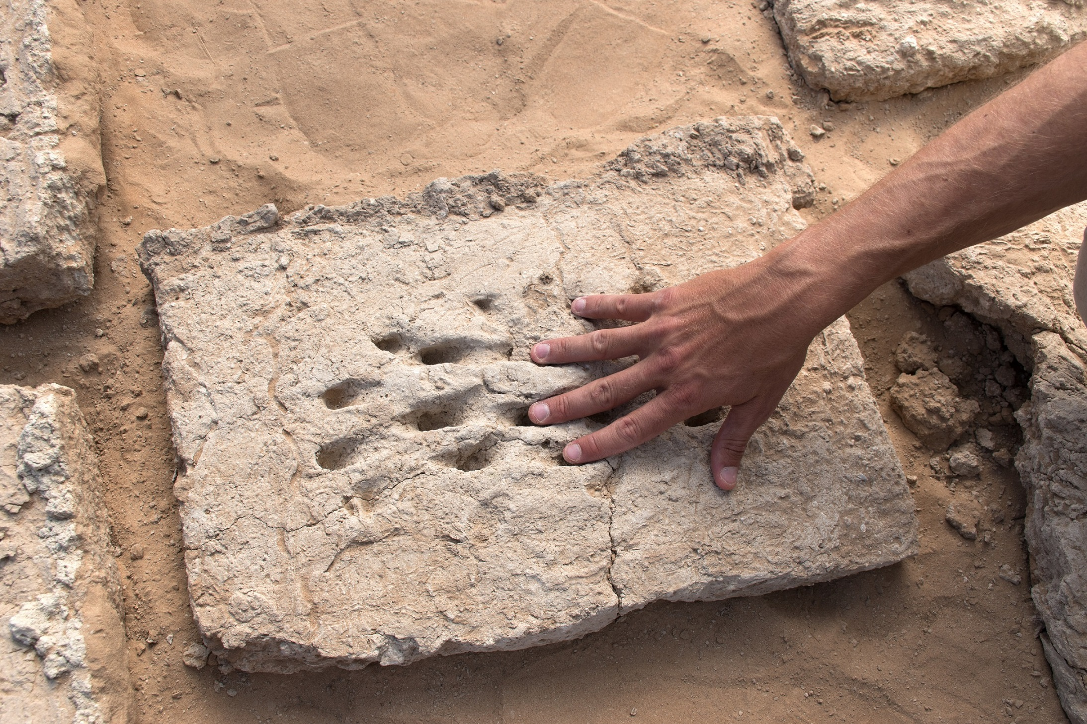 new archaeological evidence revealed at a unesco world heritage site in al ain 3