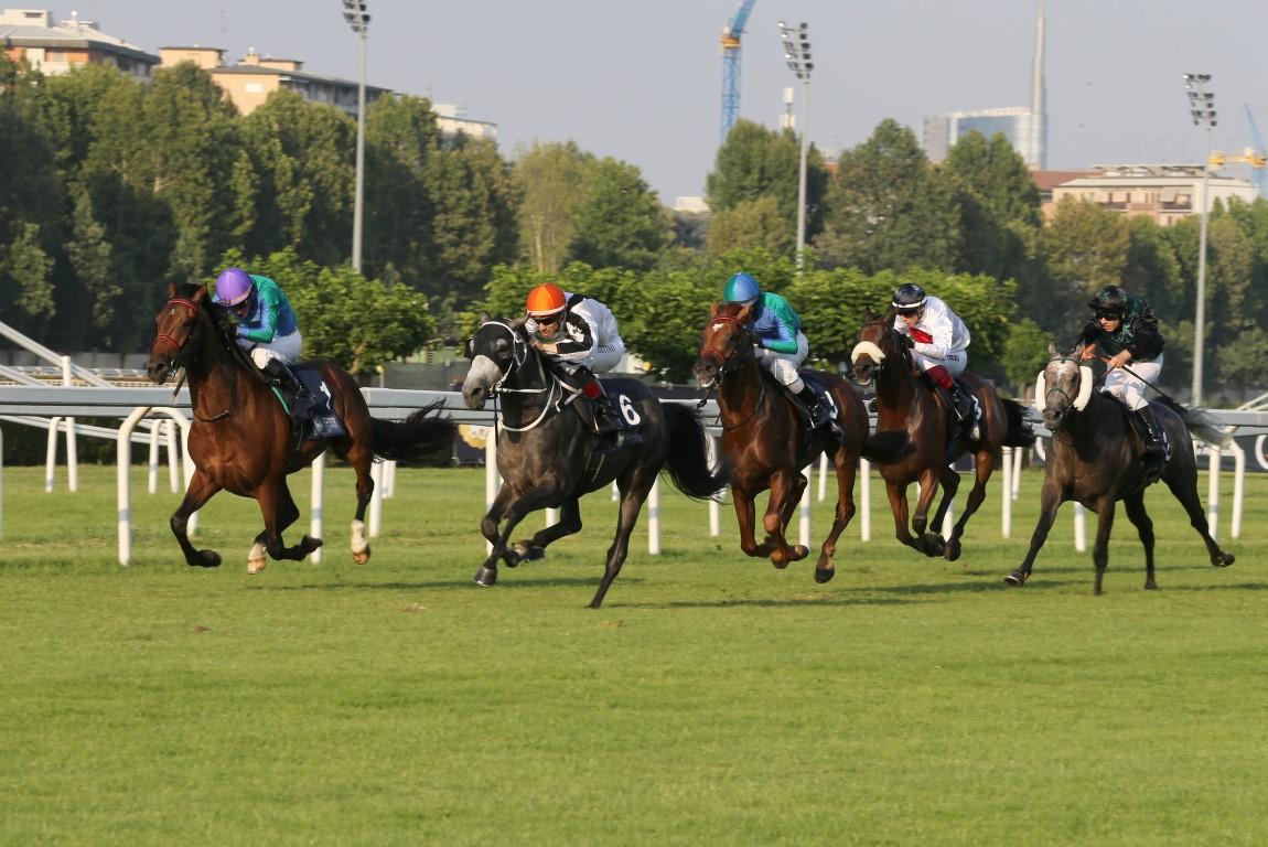روسيا تستضيف الجولة السادسة لكأس رئيس الدولة للخيول العربية غدا. 5