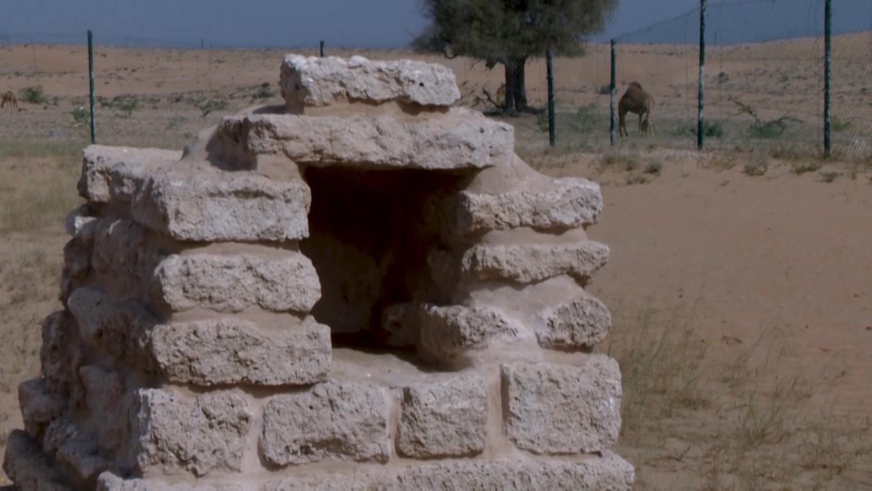 تقرير مجتمعي / معبد الدور الأثري .. شاهد على حضارة تمتد لآلاف السنين