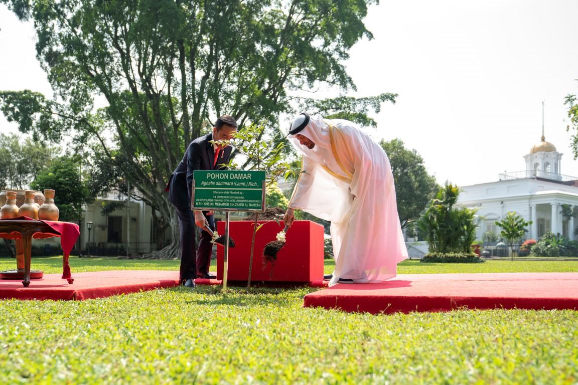 محمد بن زايد يرافقه الرئيس الأندونيسي يقوم بجولة في حدائق قصر بوغور ويغرس شجرة رمزا لقوة علاقات البلدين