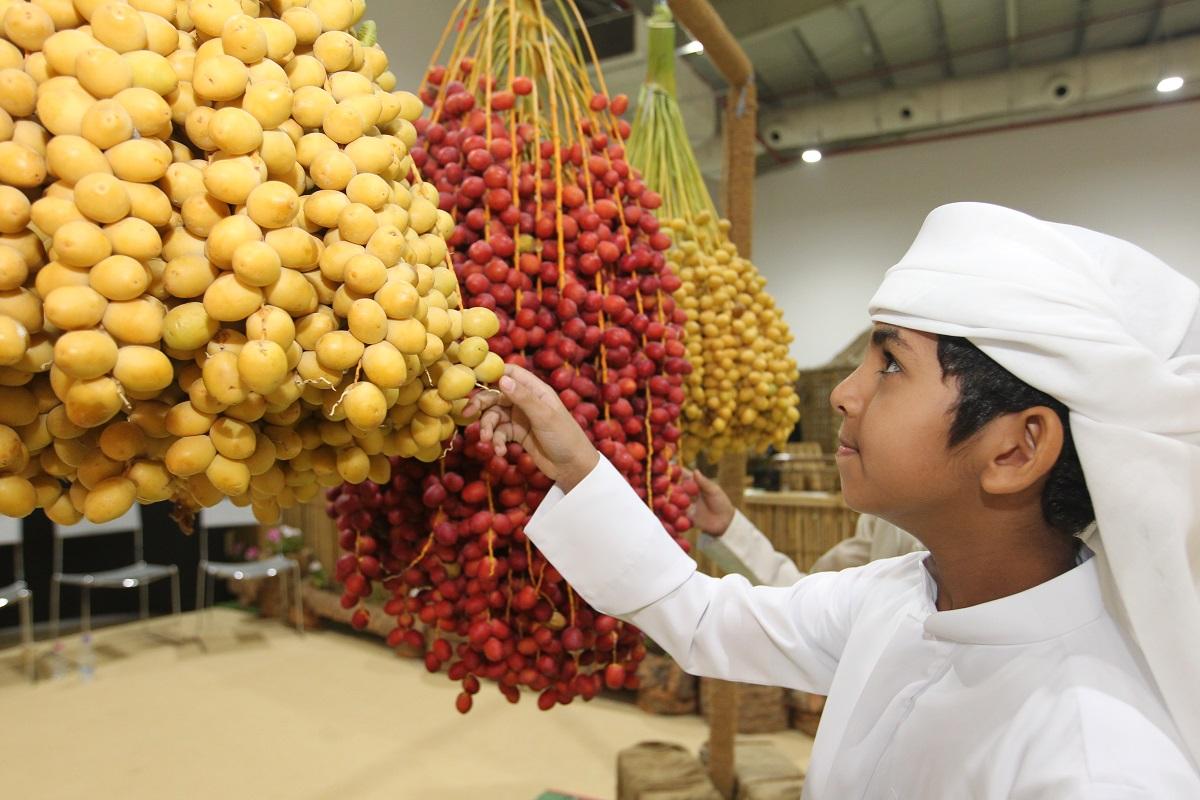 40 ألف زائر و362 جائزة بقيمة مليون درهم فى اختتام مهرجان الذيد للرطب
