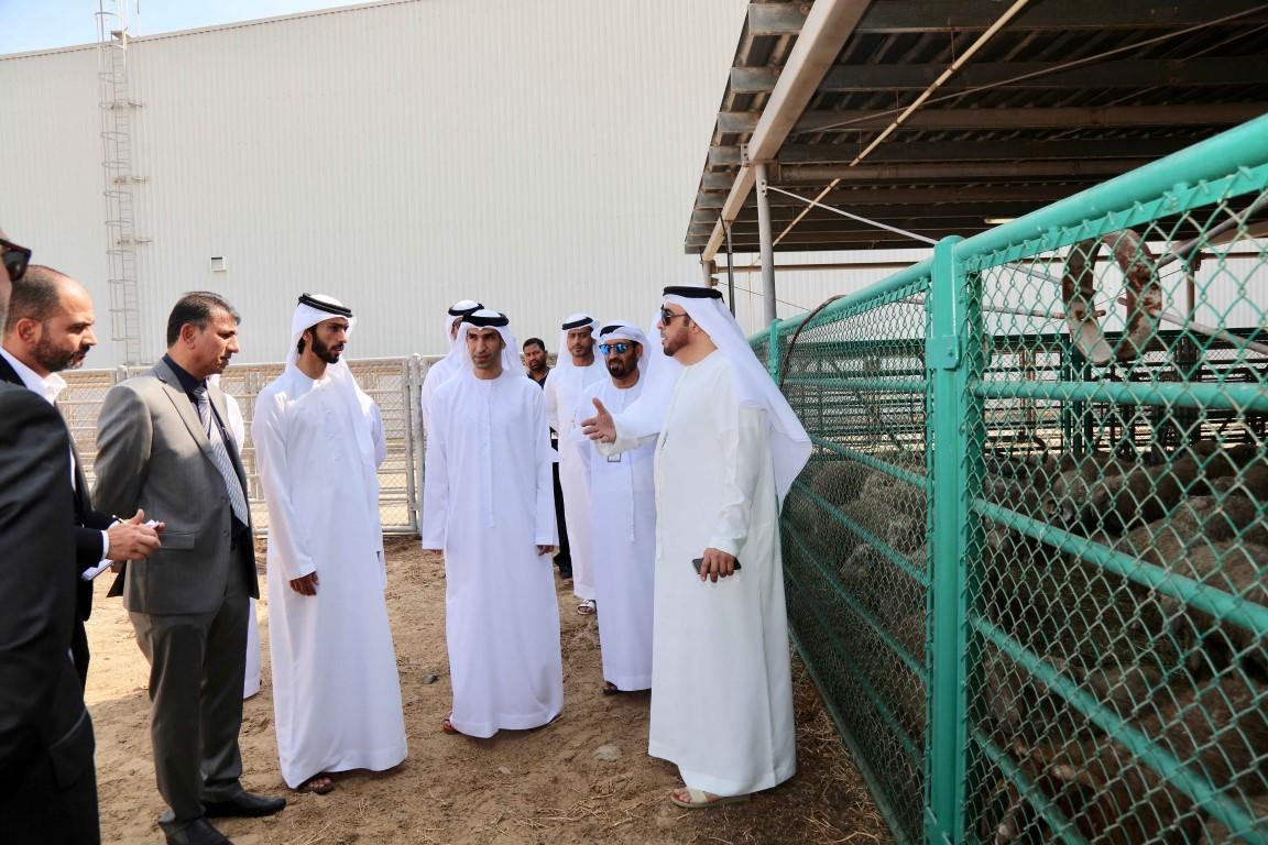 وزير التغير المناخي يتفقد الحجر البيطري وفحص الإرساليات في مطار الشارقة ومقصب دبي