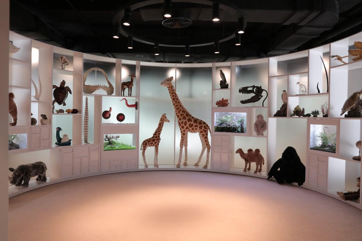 تقرير مجتمعي / مكتبة أبوظبي للأطفال .. وجهة للإبداع والمعرفة وإثراء عقول الأجيال