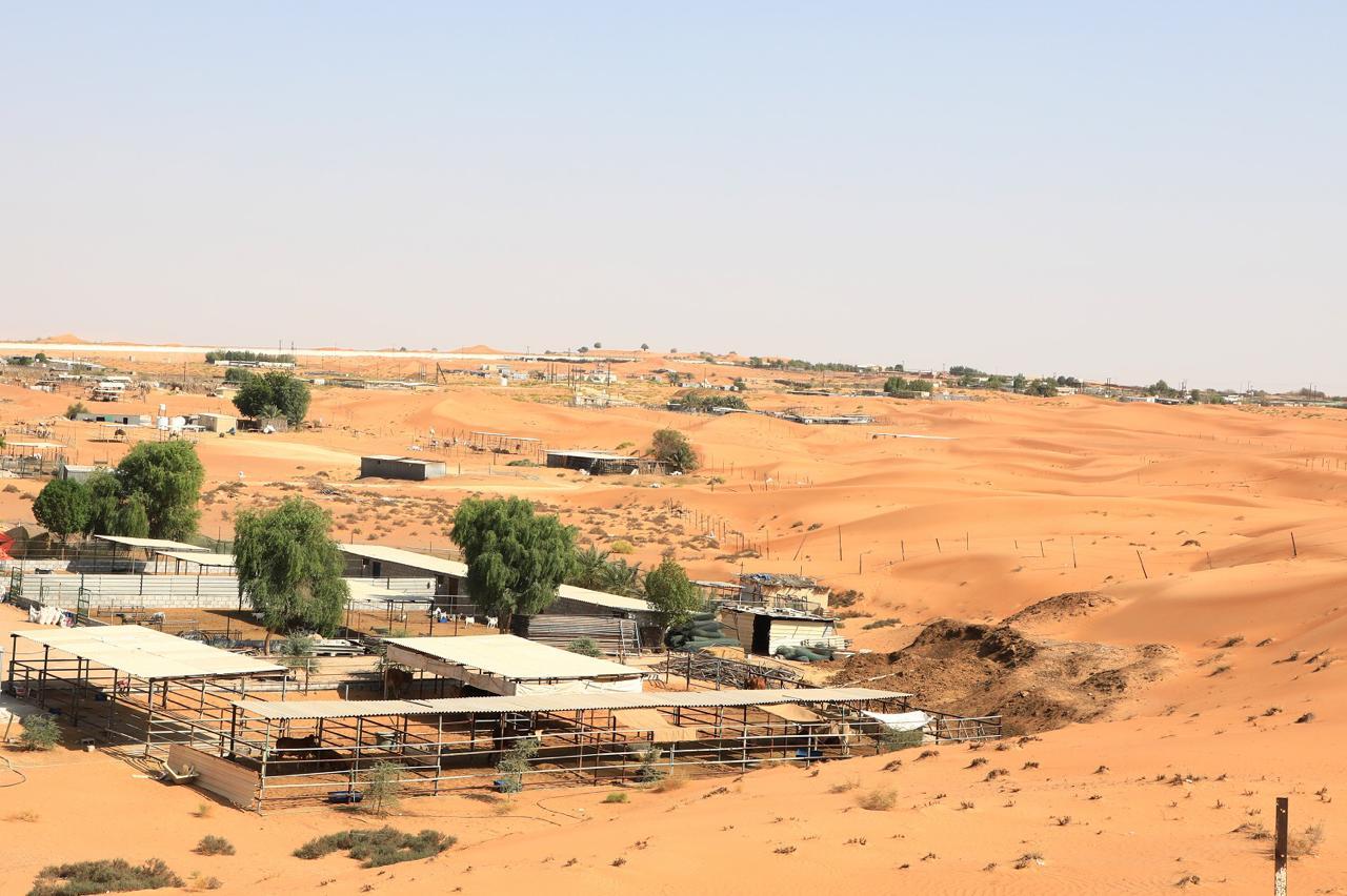 """بلدية مدينة العين تستقبل طلبات """"عزب التخييم"""" الشتوي المؤقتة"""