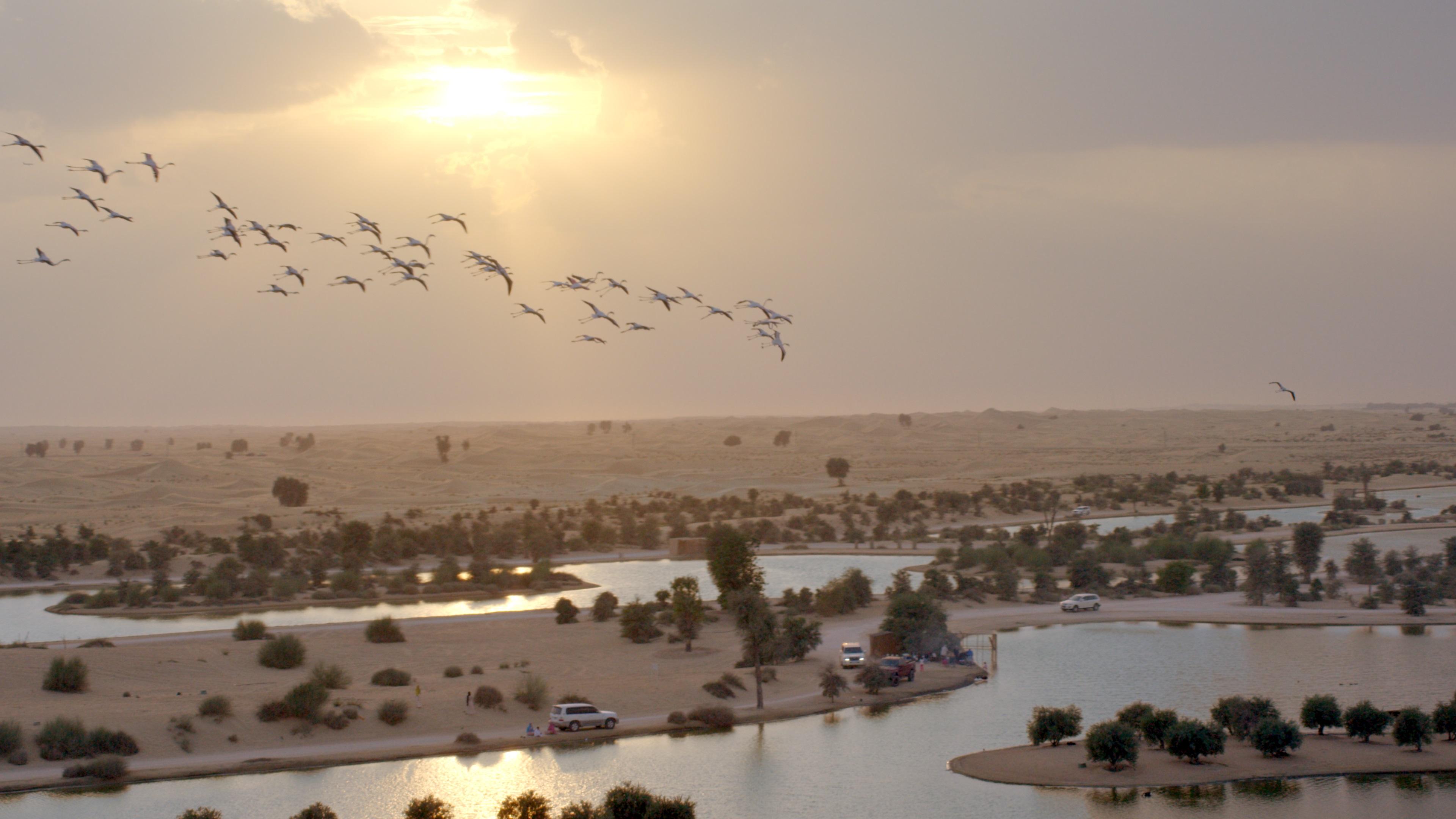 دبي ضمن أفضل 10 وجهات سياحية مفضلة في العالم للعام 2020
