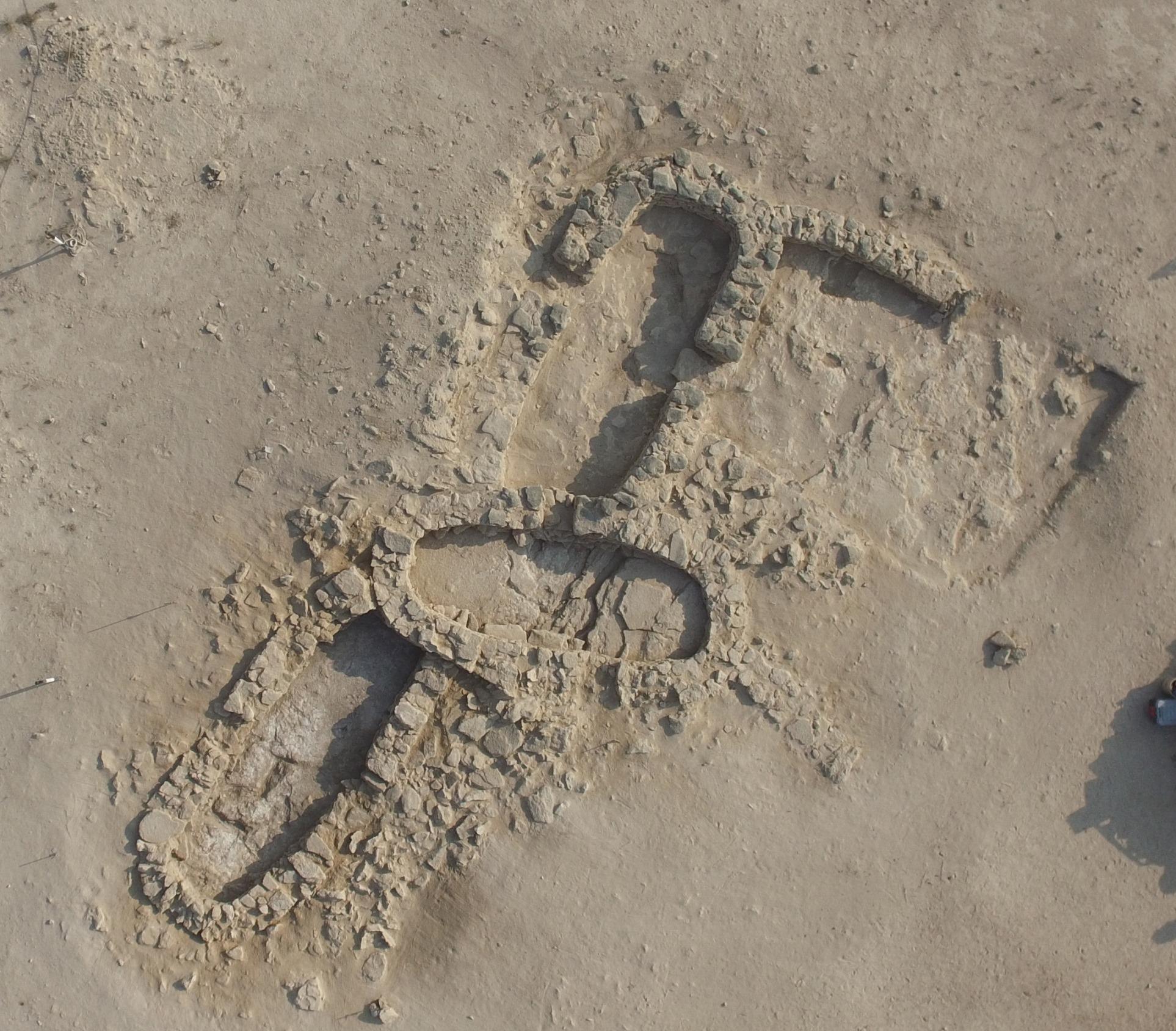 """اكتشاف أقدم لؤلؤة طبيعية في العالم في جزيرة """"مروّح"""" بأبوظبي"""