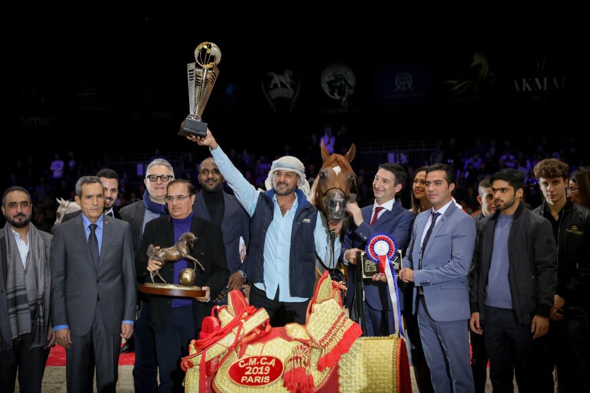 مربط دبي الأفضل في بطولة العالم لجمال الخيل العربي 2019 بفرنسا