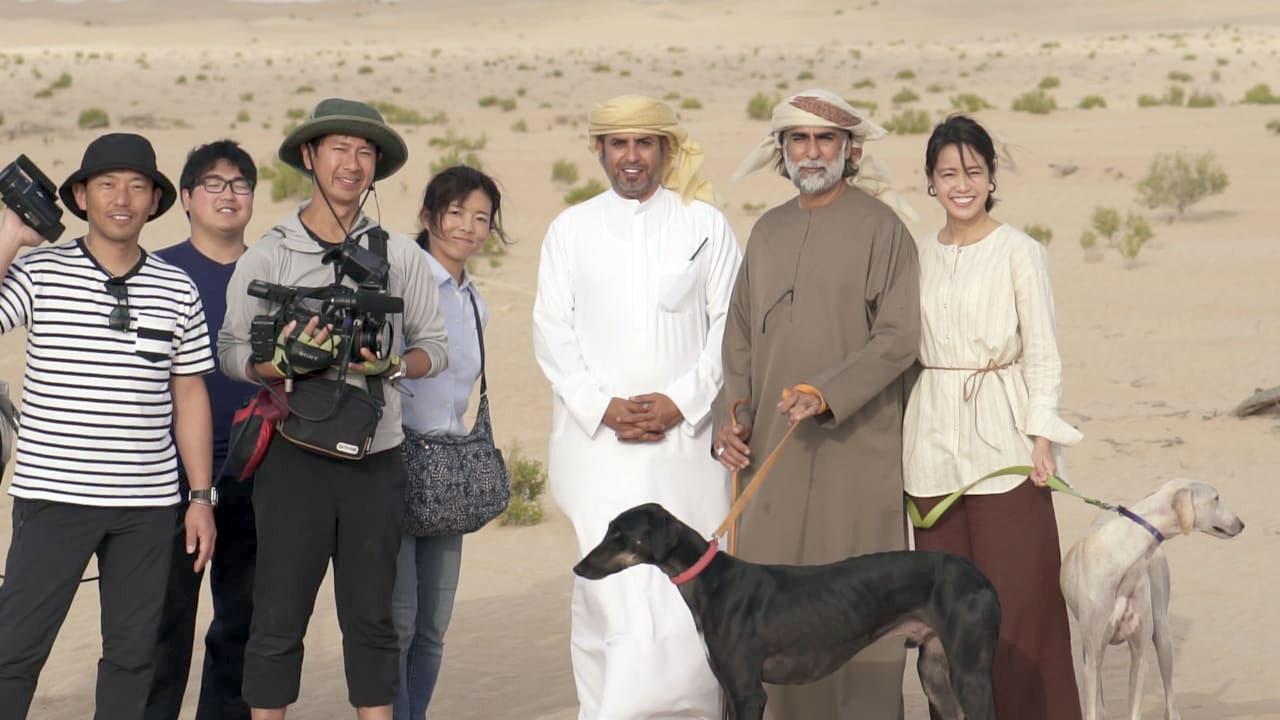 التلفزيون الياباني يعد تقريرا يستعرض الواقع البيئي والتراثي للإمارات من خلال محمية المرزوم بمنطقة الظفرة