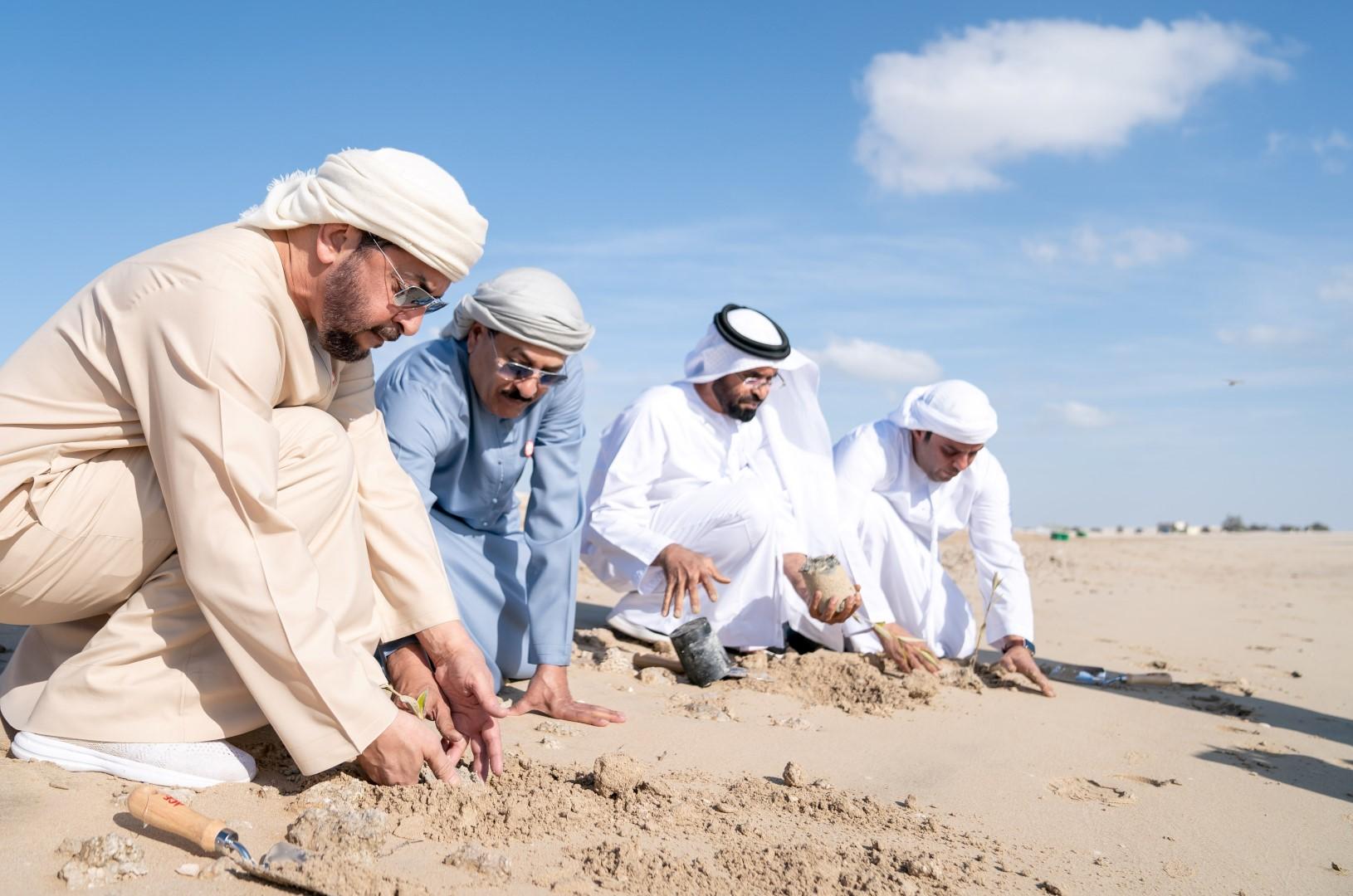 حمدان بن زايد يشارك بزراعة شتلات أشجار القرم في جزيرة الأريام