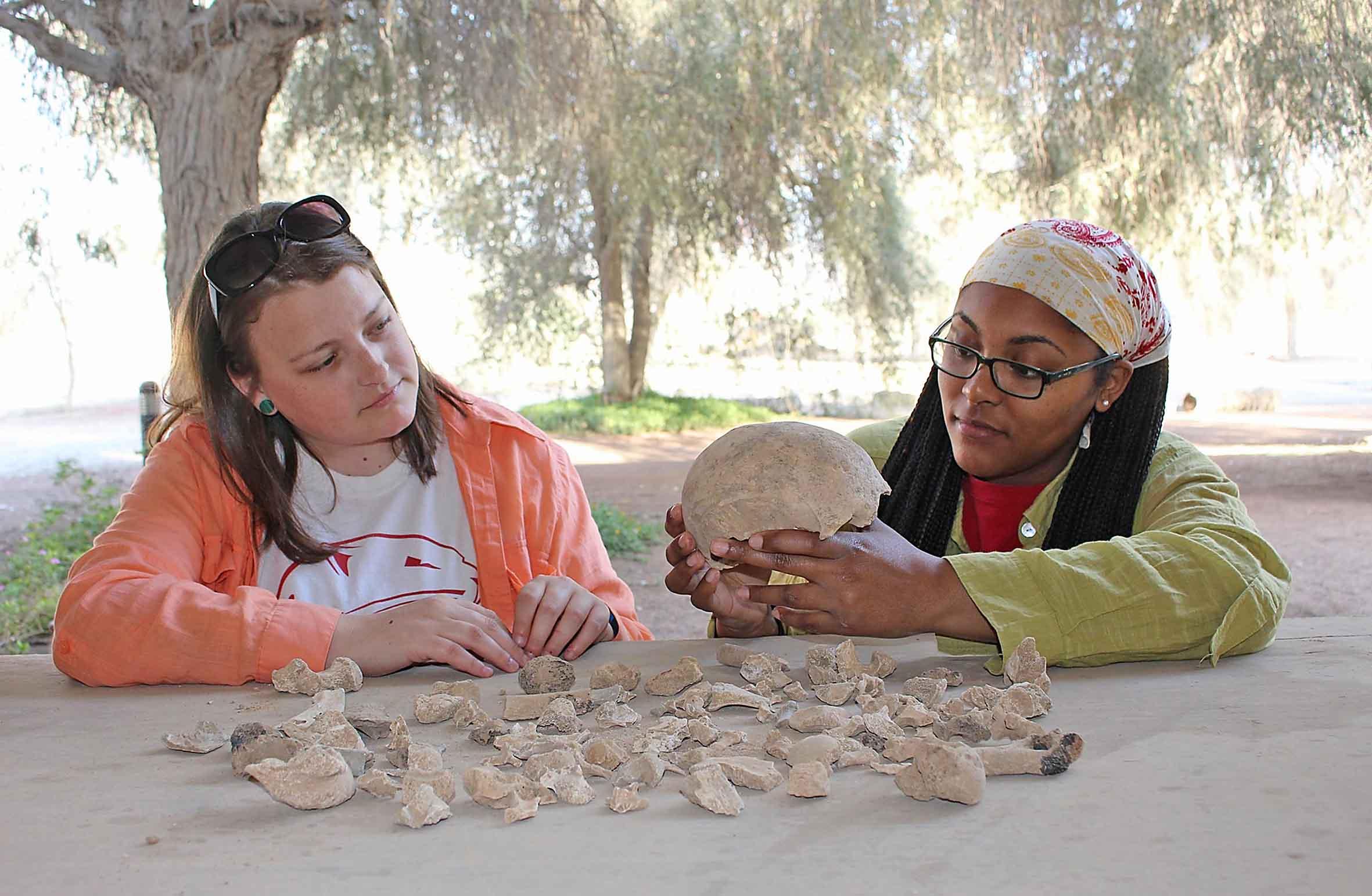 دائرة الآثار والمتاحف برأس الخيمة تكشف عن مشروع بحثي لدراسة عظام بشرية أثرية