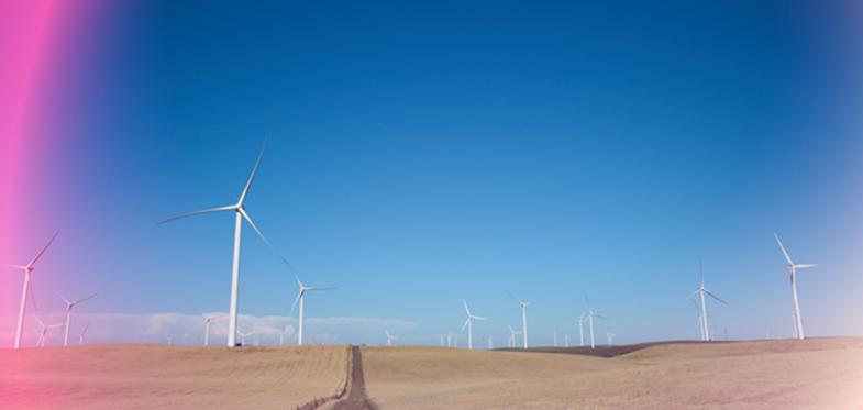 """""""مايكروسوفت"""" تطلق مركز التميز لتعزيز الابتكار والاستدامة في قطاع الطاقة"""