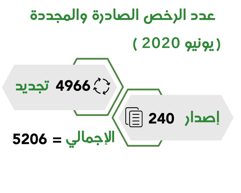 اقتصادية الشارقة تحقق 14 بالمائة نمواً في الرخص خلال شهر يونيو 2020