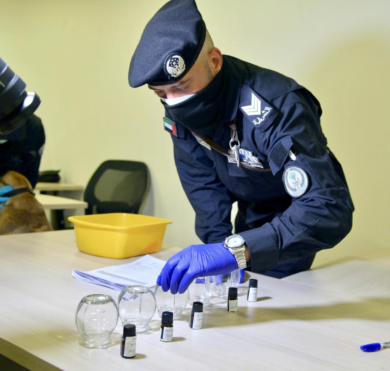 الإمارات الأولى عالميا في تطبيق الكشف عن كوفيد 19 بالكلاب البوليسية