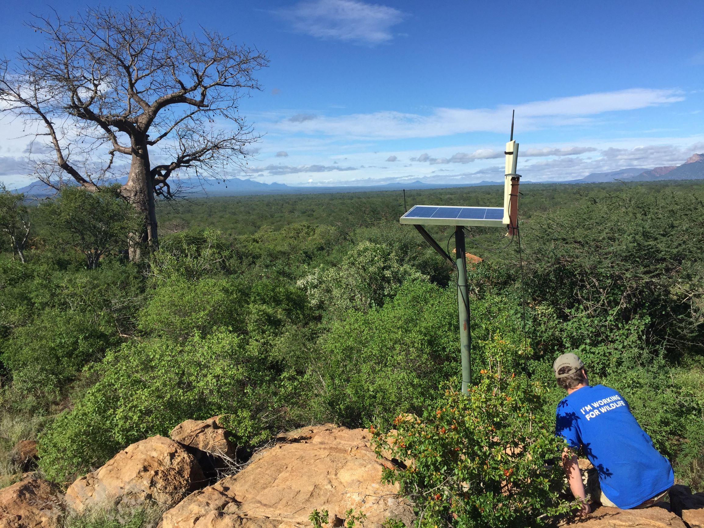 trialling technology in tsavo west national park, kenya (c)zsl (2)