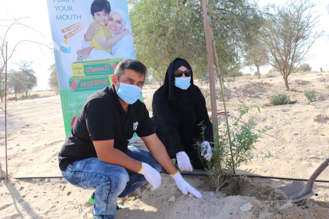 مجموعة الإمارات للبيئة تطلق مبادرة لزراعة أشجار السواك