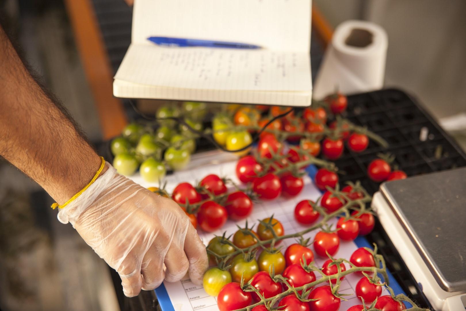 """""""مكتب أبوظبي للاستثمار"""" يخصص 152 مليون درهم لتعزيز إمكانيات منظومة التقنيات الزراعية في الإمارة"""