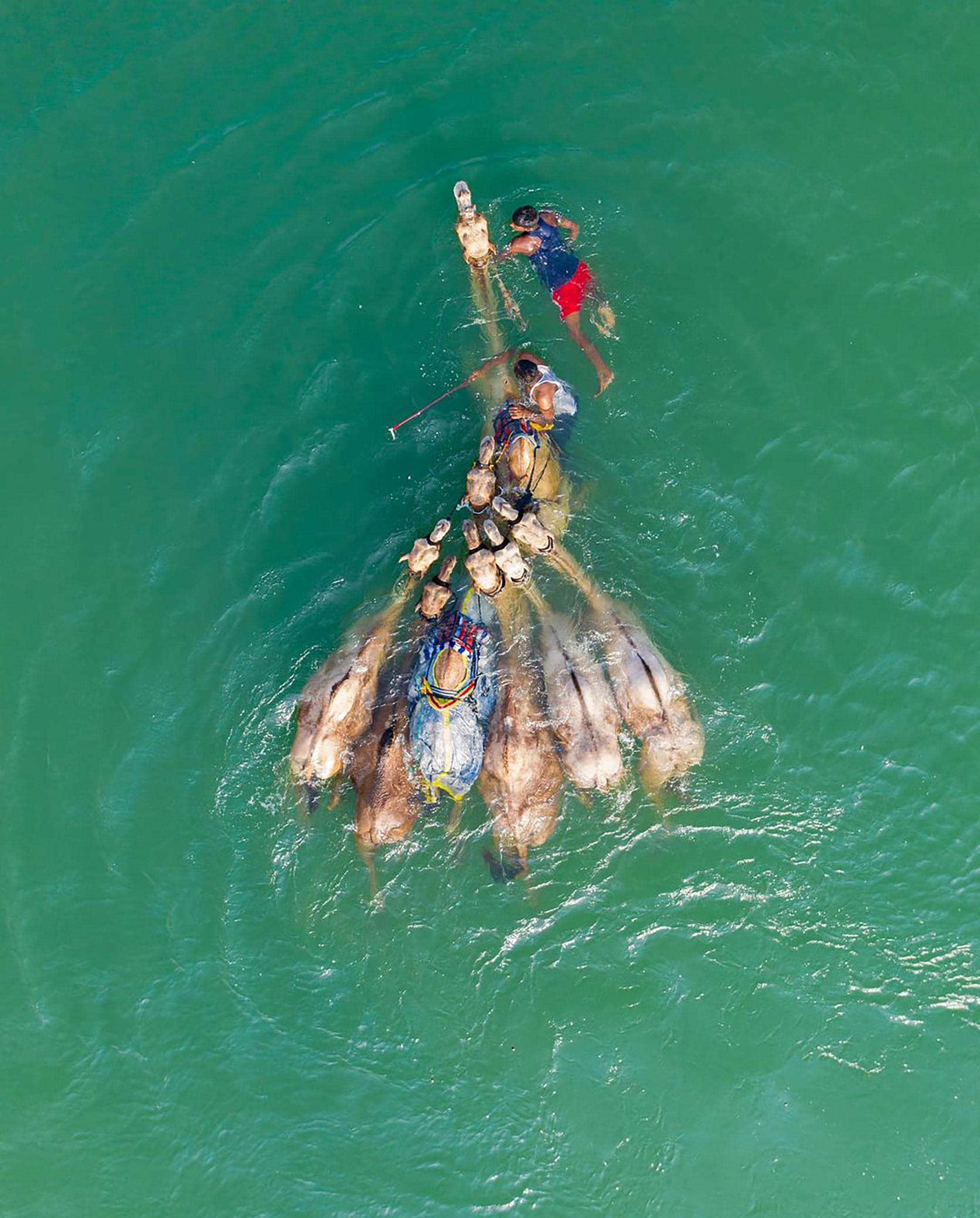"""تحدي """"أجمل شتاء في الإمارات"""" يبرز الكنوز الطبيعية والتاريخية والتراثية بالدولة"""