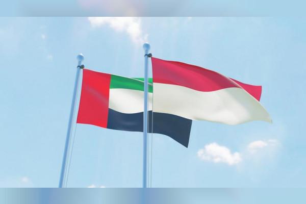 الإمارات ترسل طائرة تحمل 48 طنا من المواد الغذائية إلى إندونيسيا