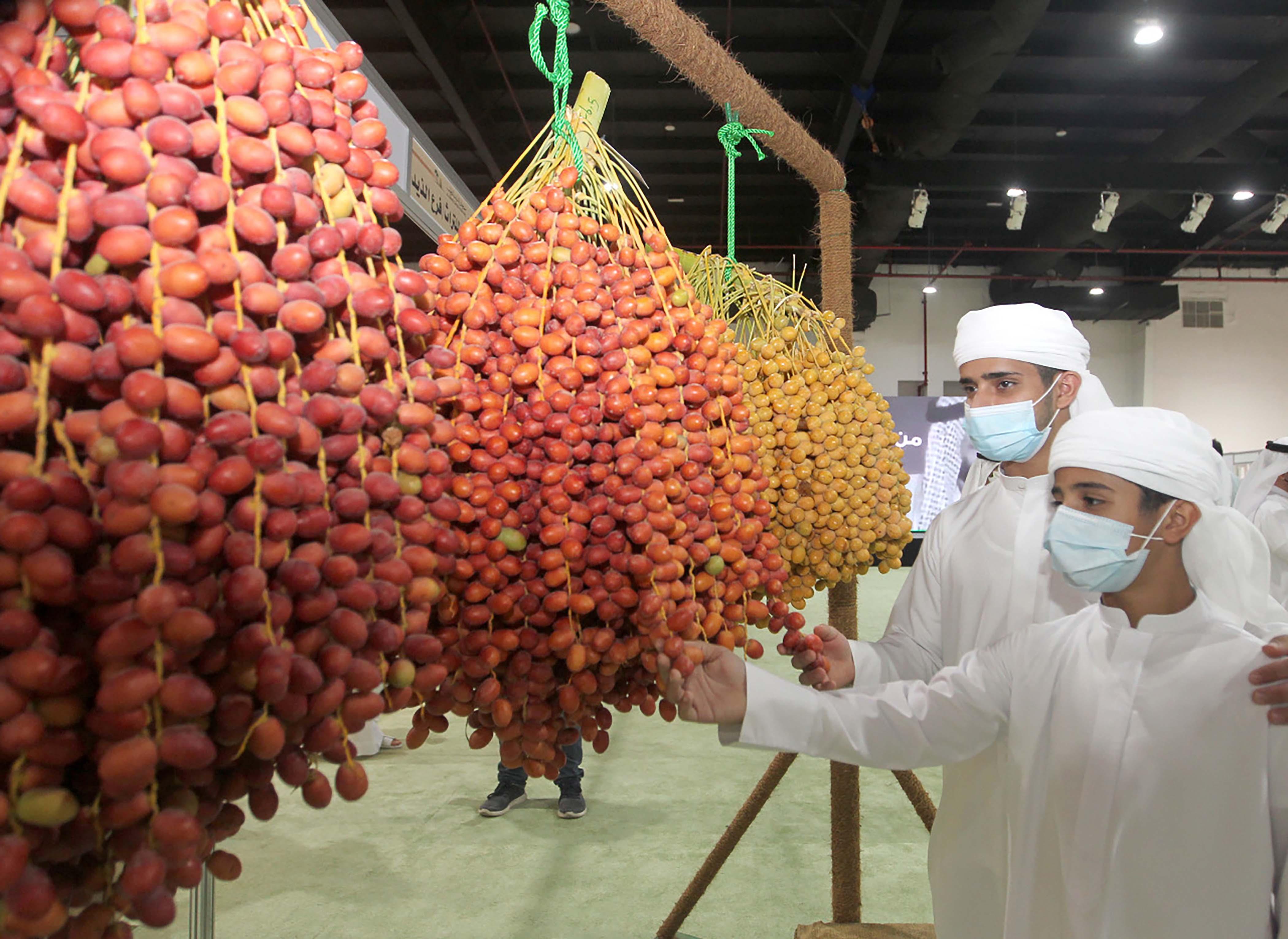 مسابقات مهرجان الذيد للرطب تشهد إقبالا كبيرا من المزارعين وملّاك النخيل