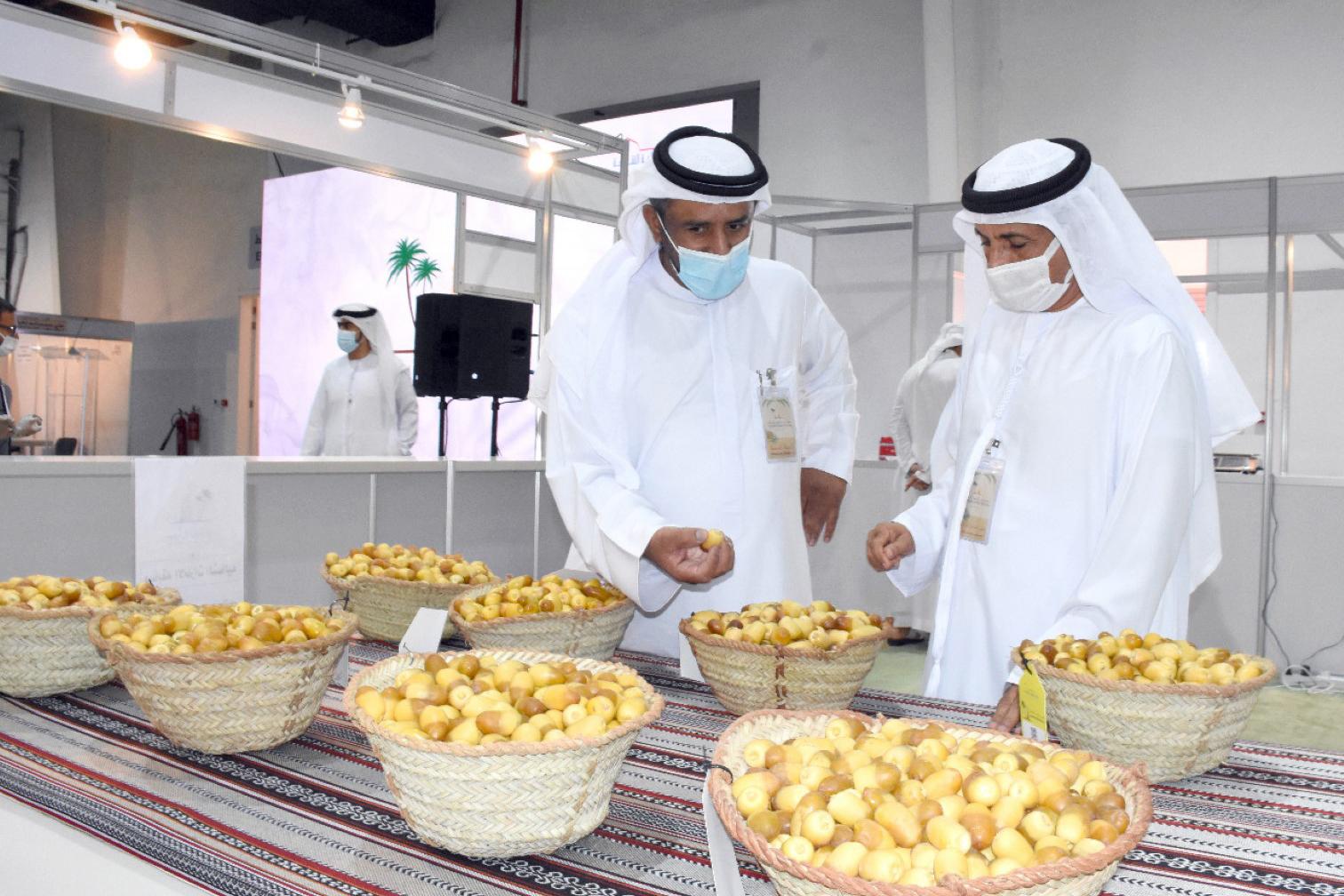 افتتاح النسخة الخامسة من مهرجان الذيد للرطب