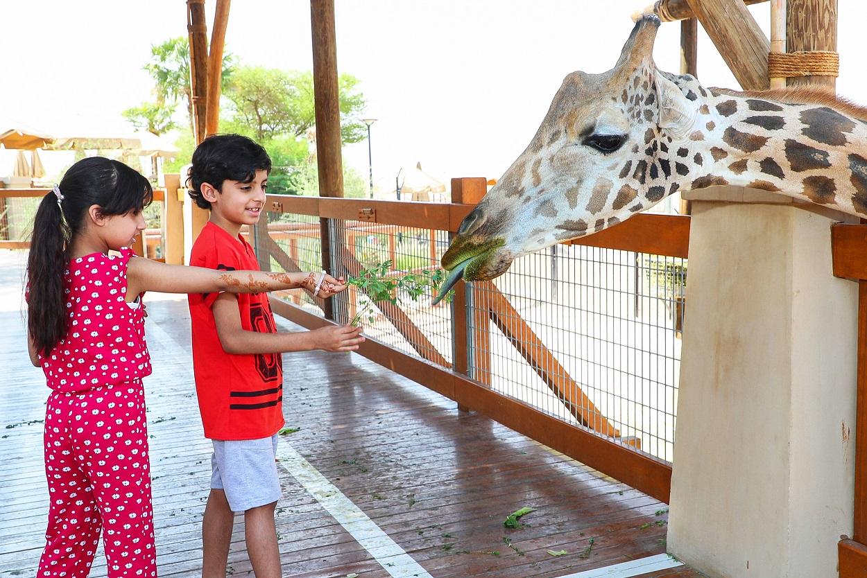 حديقة الحيوانات بالعين تقدم تجارب مشوقة خلال عيد الأضحى