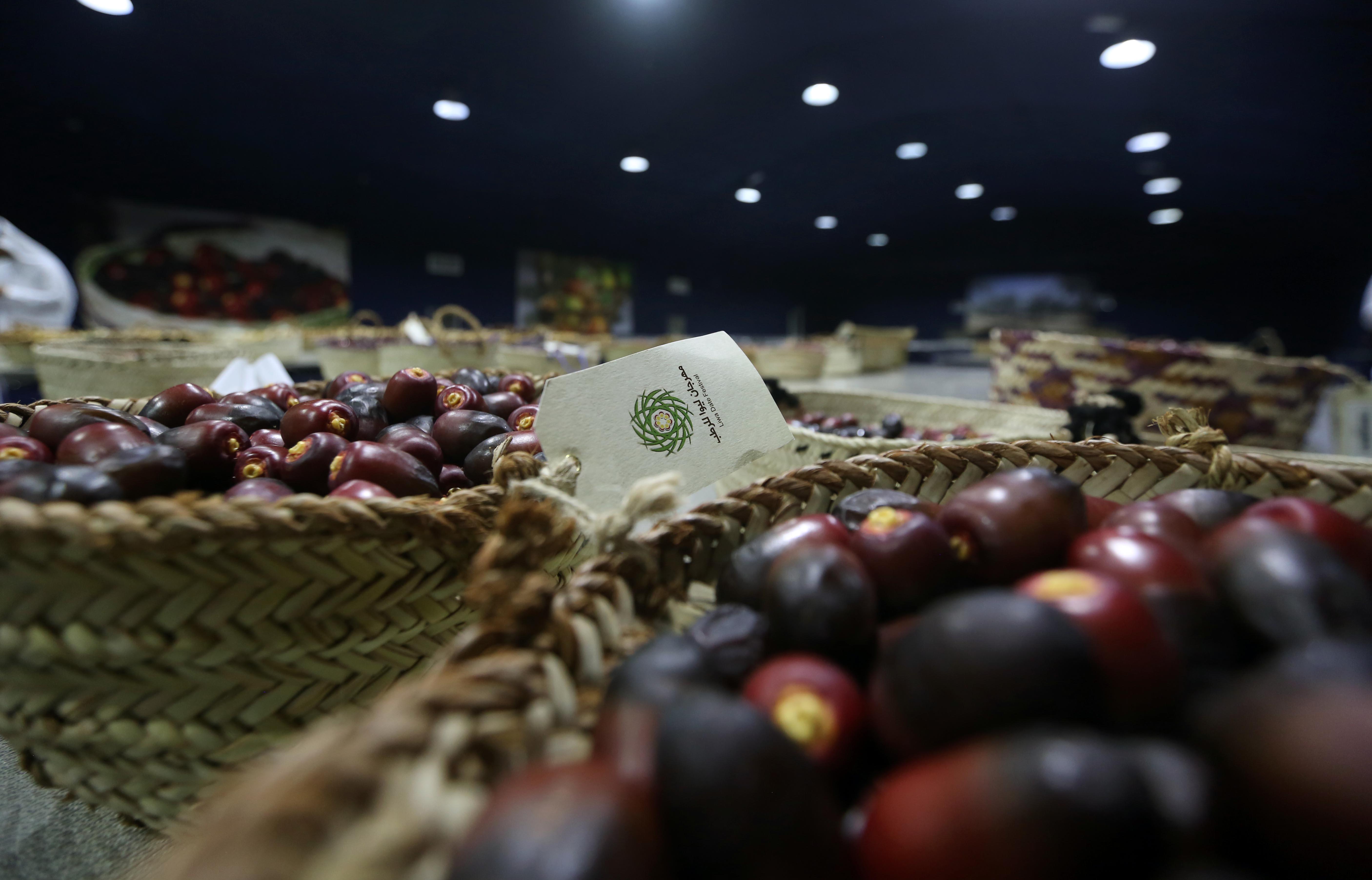 مهرجان ليوا للرطب يستأنف مسابقاته غدا