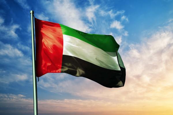 حققت العلامة الكاملة في 31 مؤشرا .. الإمارات تتفوق عالمياً في تقرير النضج الرقمي