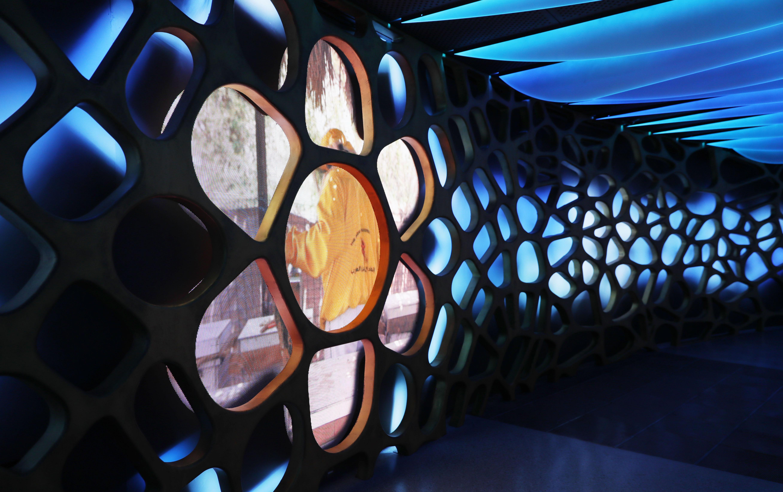 """جناح الإستدامة ..إرث عمراني ومركز للعلوم ضمن """"دستركت 2020"""""""