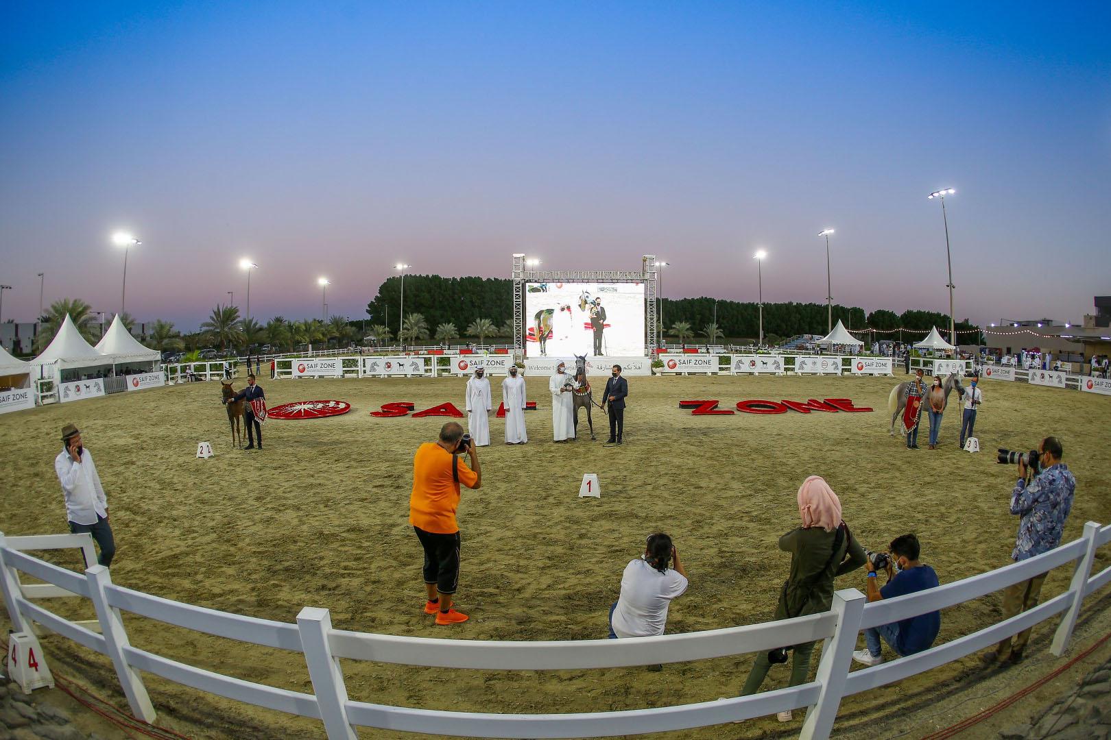 مهرجان الشارقة الدولي للجواد العربي ينطلق غدا